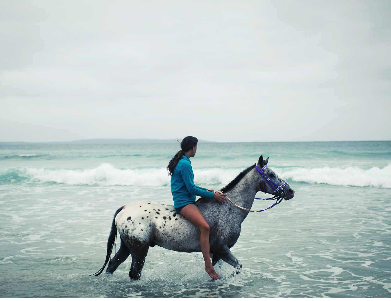 Sheridan.Nilsson.Horse.Portrait.01.jpg
