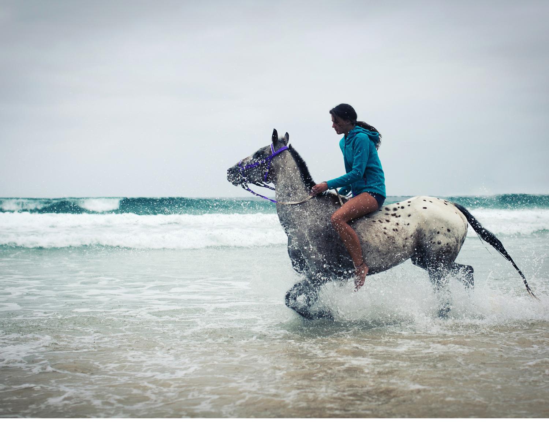 Sheridan.Nilsson.Horse.Portrait.05.jpg