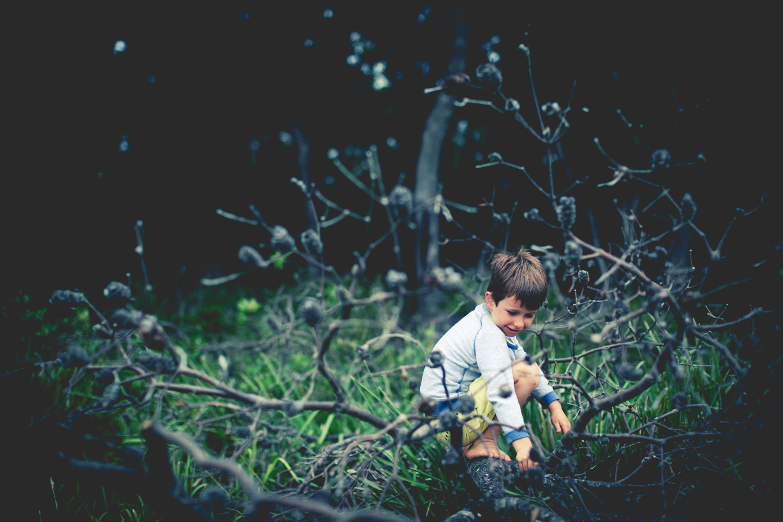 sheridan nilsson child portrait.3.JPG