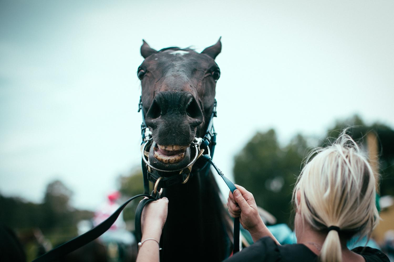 oakbank_racecourse_sheridan_nilsson.35.JPG