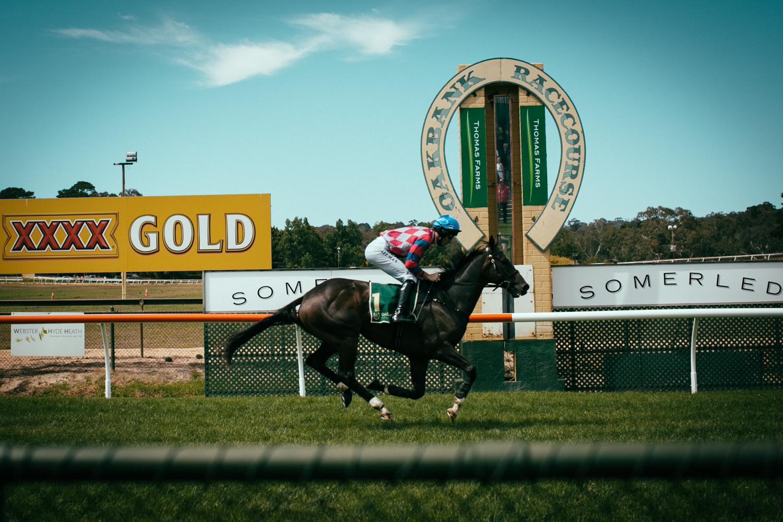 oakbank_racecourse_sheridan_nilsson.07.JPG