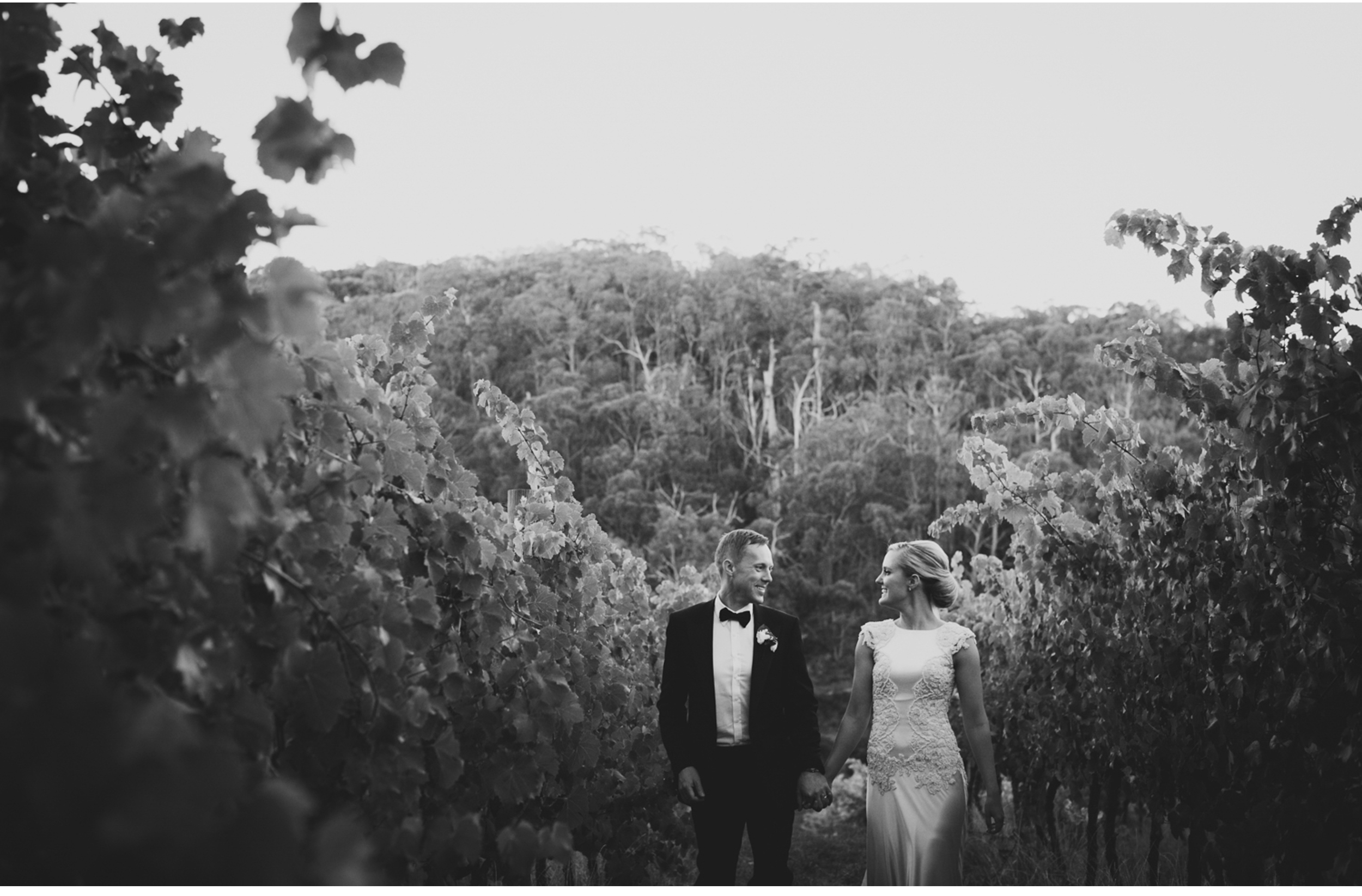 south_australia_winery_wedding.63.jpg
