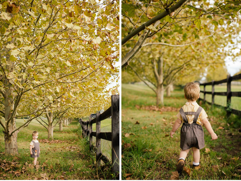sheridan_nilsson_autumn_blog.20.jpg