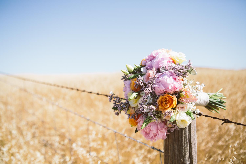 adelaide.hills.vineyard.wedding.south.australia.barossa.050.jpeg