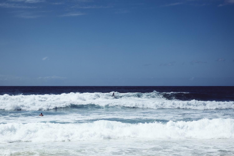 tamarama_nippers_surf_life_saving-75.jpg