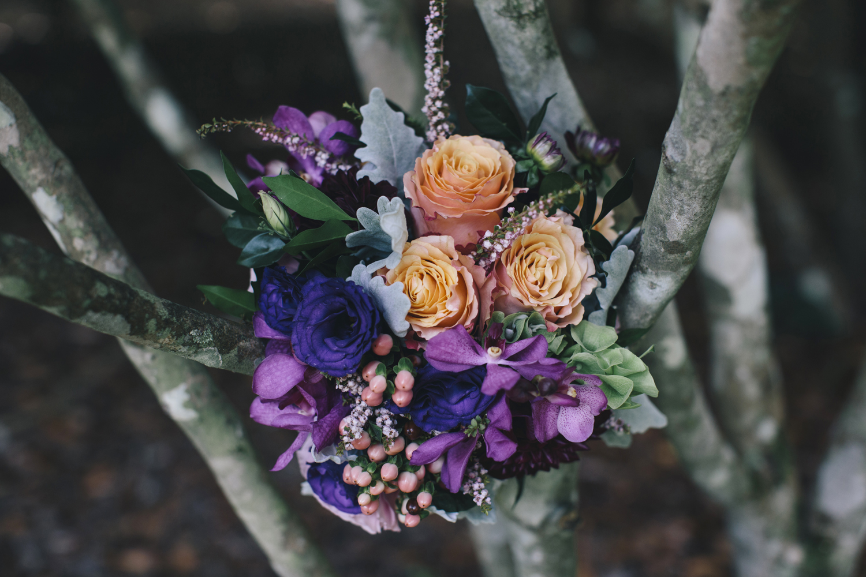 lilyvale_wedding_royal_national _park_south_coast.jpg