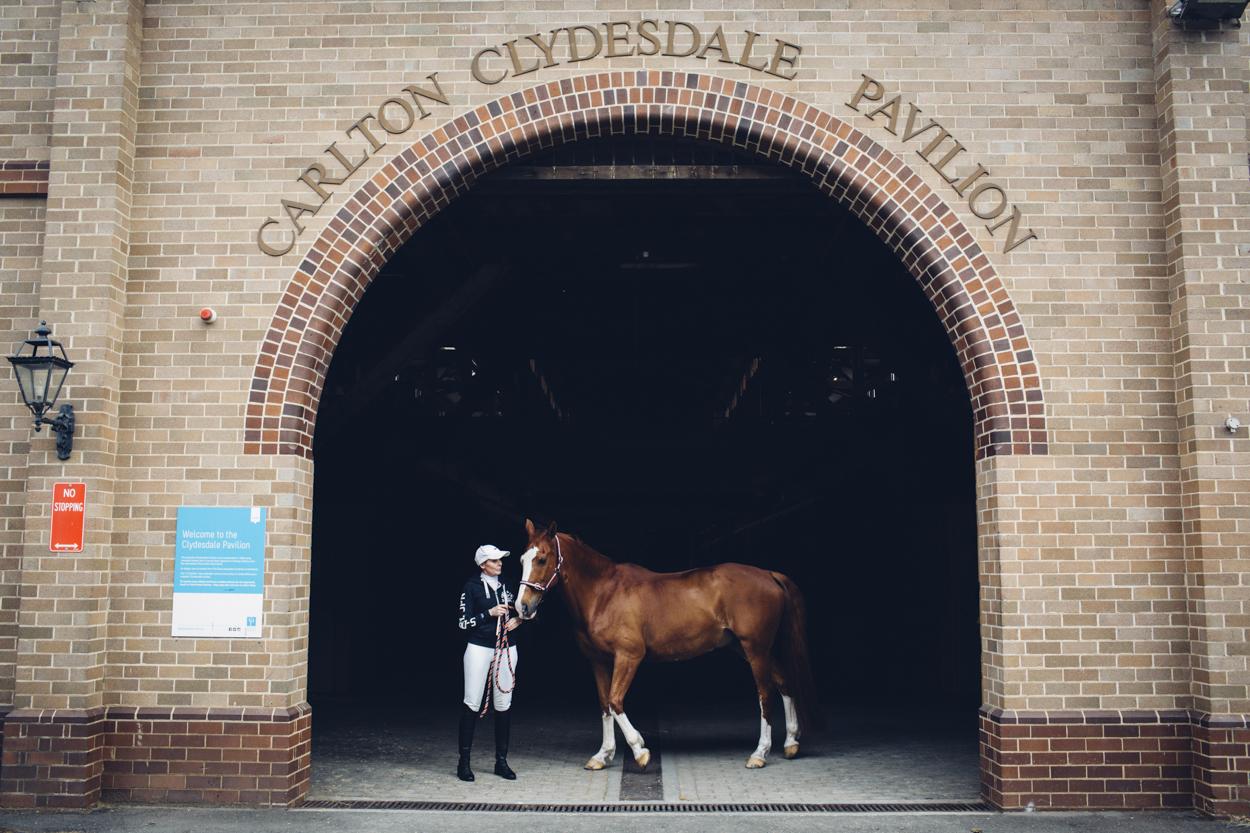 centennial_park_equestrian_centre_horse_photography.-7.jpg