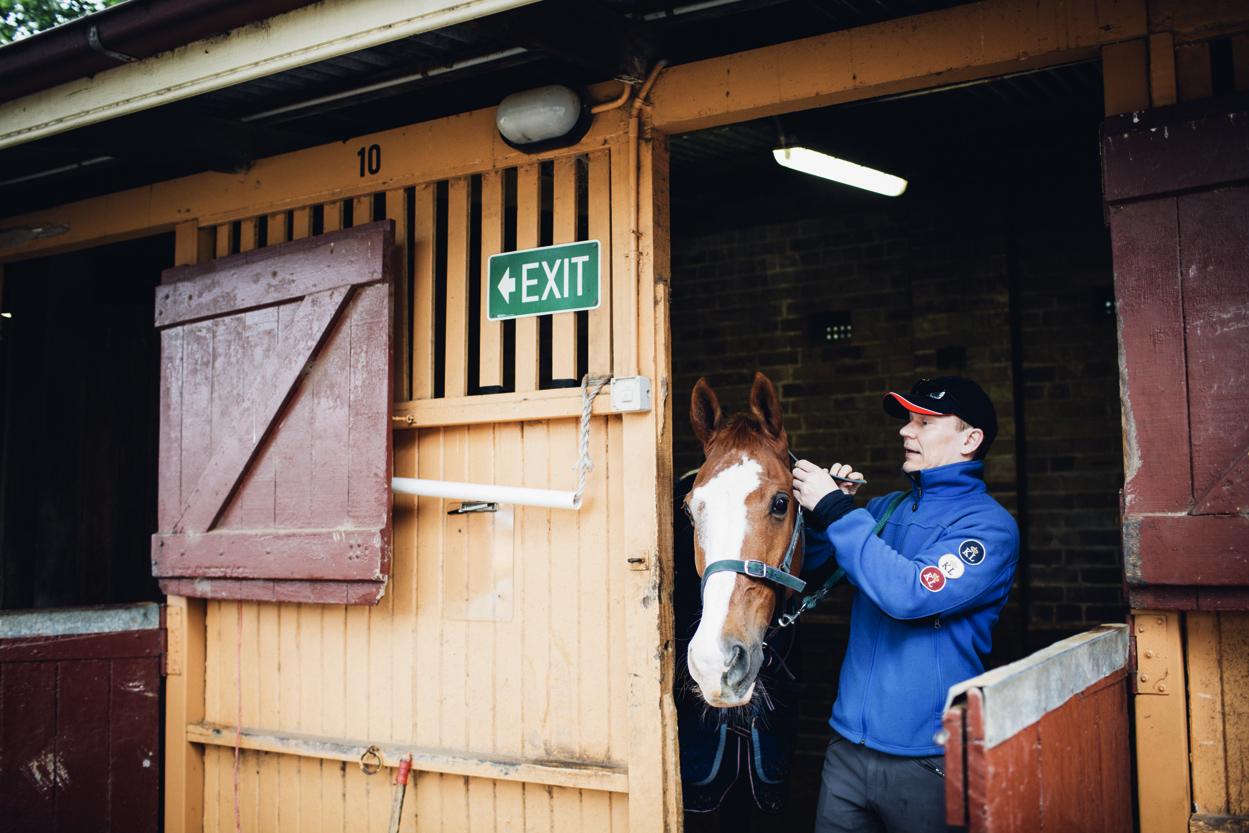 JED_Centennial_Park_Equestrian_Centre.077.jpeg