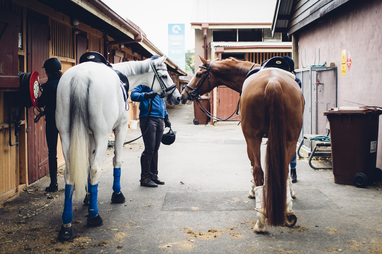 JED_Centennial_Park_Equestrian_Centre.092.jpeg