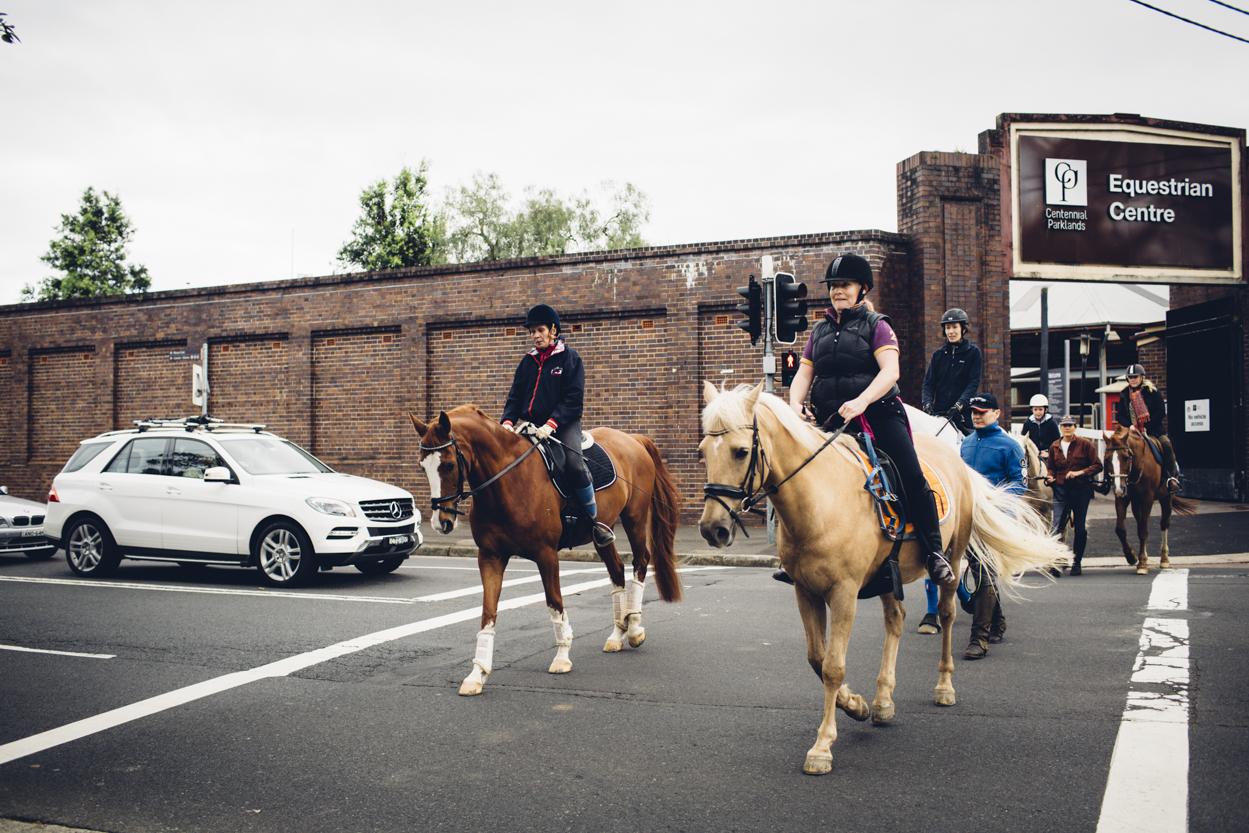 JED_Centennial_Park_Equestrian_Centre.104.jpeg