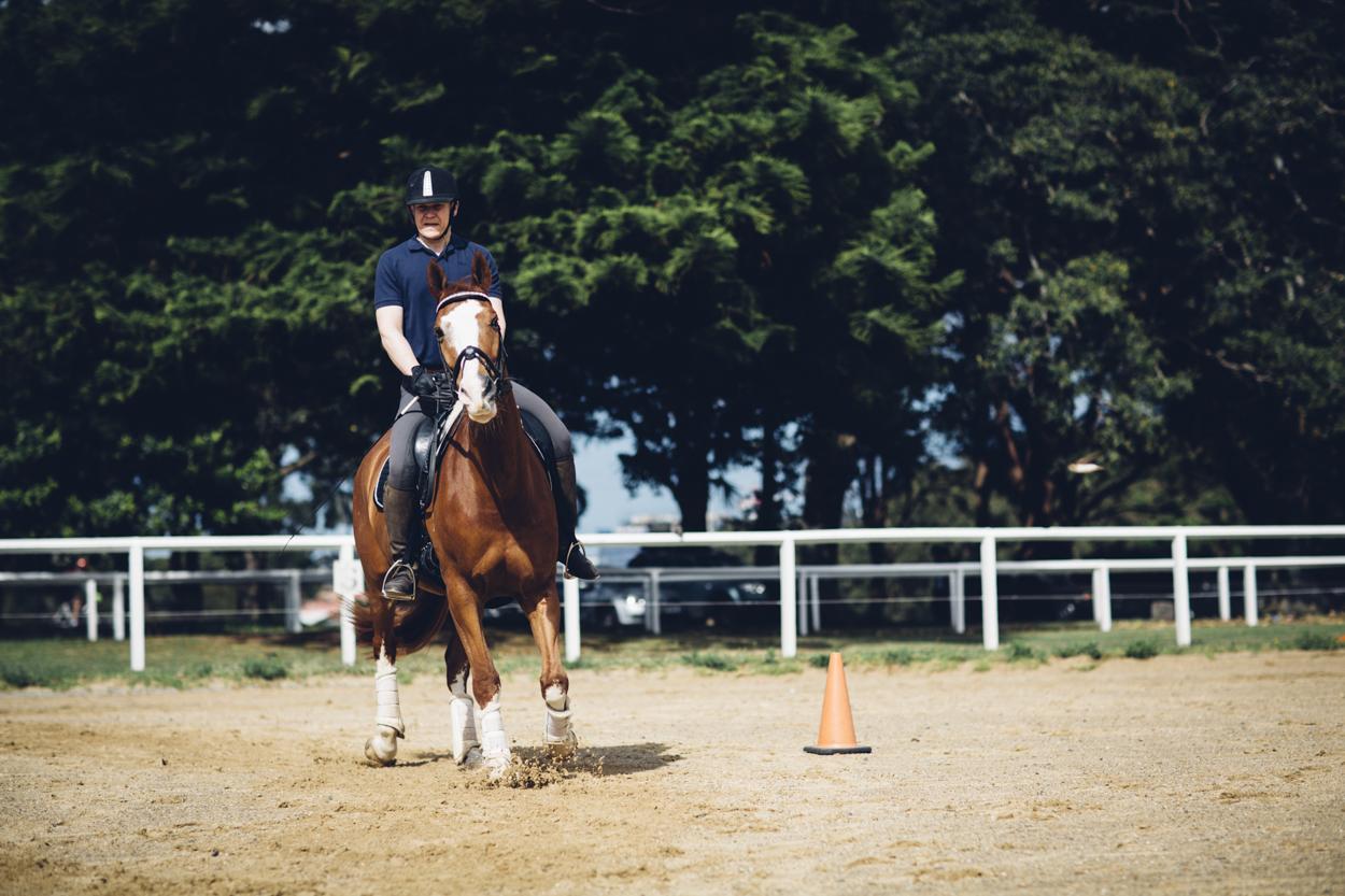 JED_Centennial_Park_Equestrian_Centre.143.jpeg