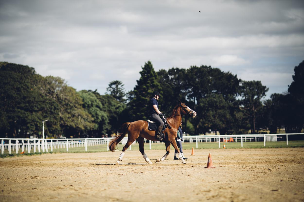 JED_Centennial_Park_Equestrian_Centre.044.jpeg