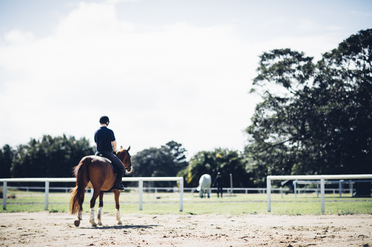 JED_Centennial_Park_Equestrian_Centre.068.jpeg