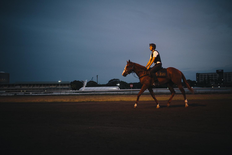 randwick_racecourse_australian_turf_club-3442.jpg