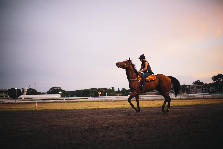 randwick_racecourse_australian_turf_club-3490.jpg