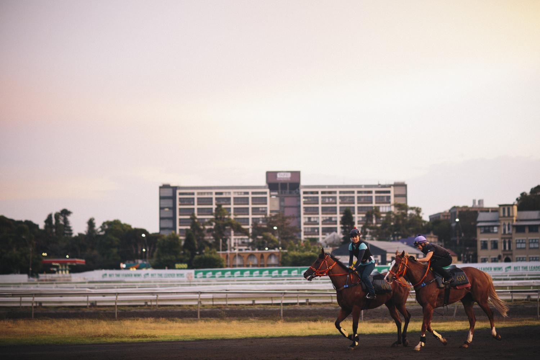 randwick_racecourse_australian_turf_club-3521.jpg