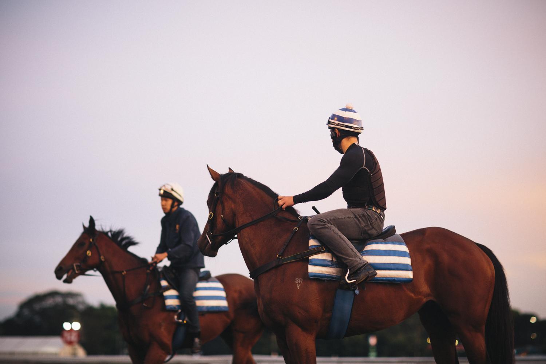 randwick_racecourse_australian_turf_club-3526.jpg