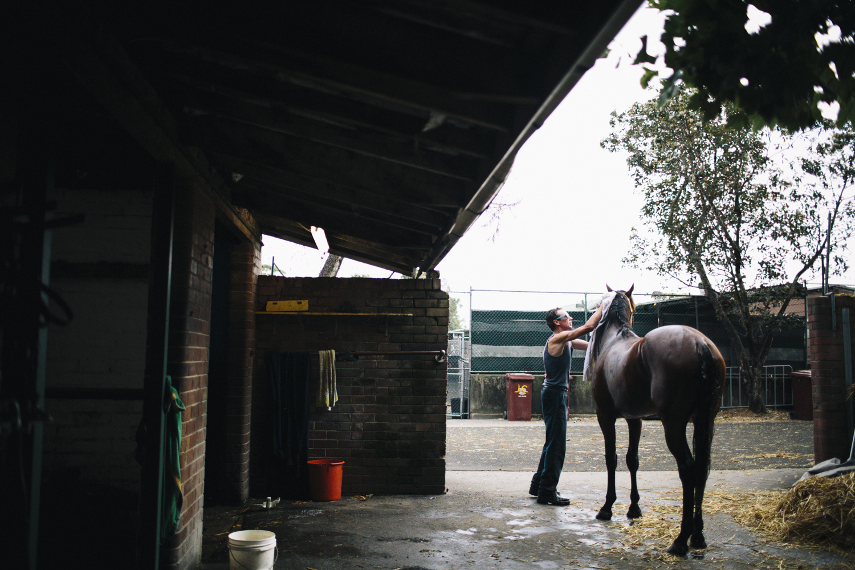 randwick_racecourse_australian_turf_club-3833.jpg