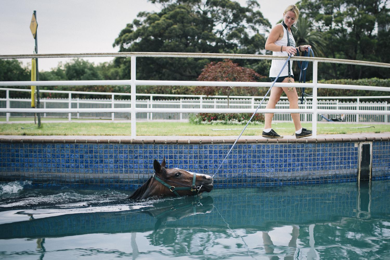 randwick_racecourse_australian_turf_club-3894.jpg