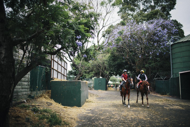 randwick_racecourse_australian_turf_club-3944.jpg