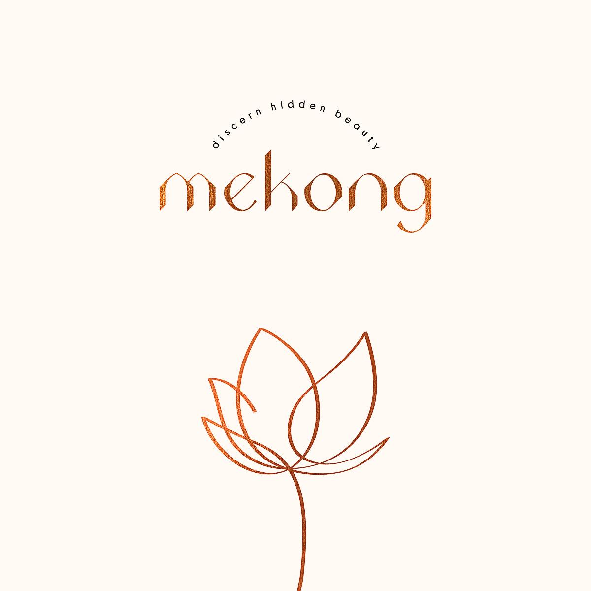 Mekong_KV.jpg