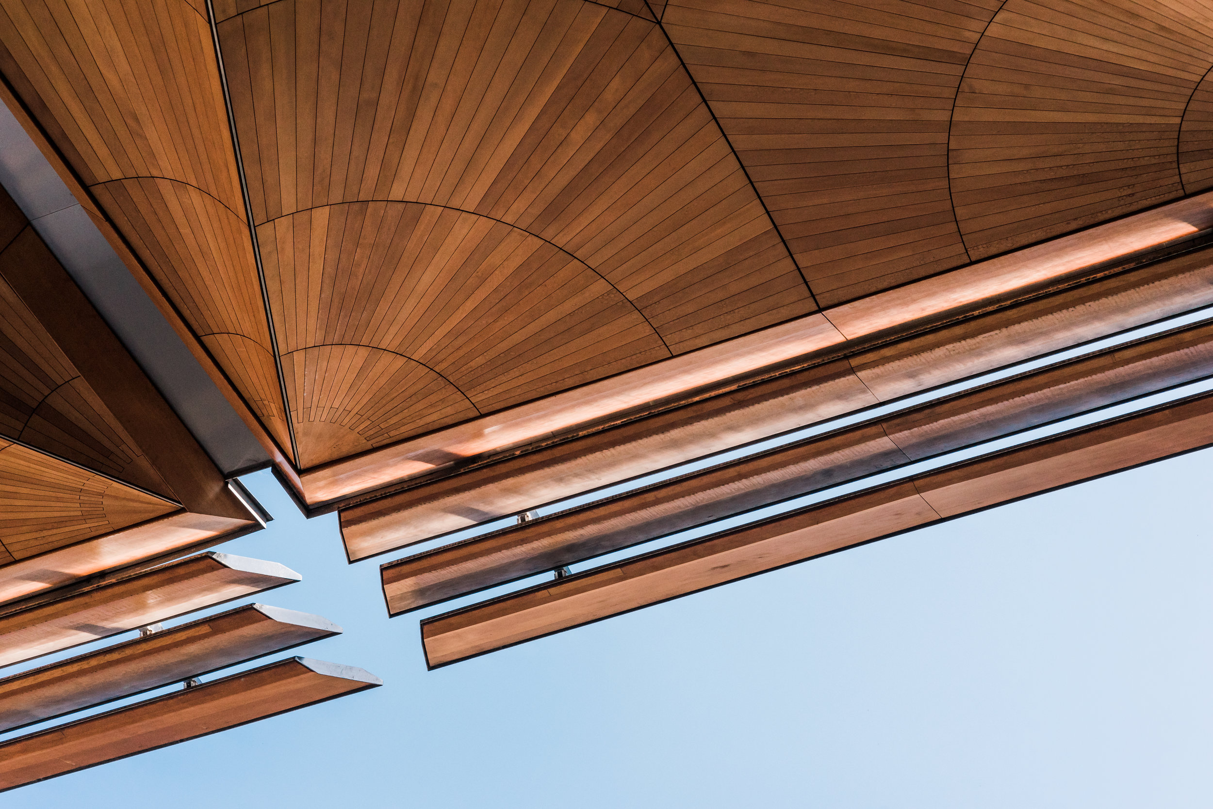 Studio South - The International-3.jpg