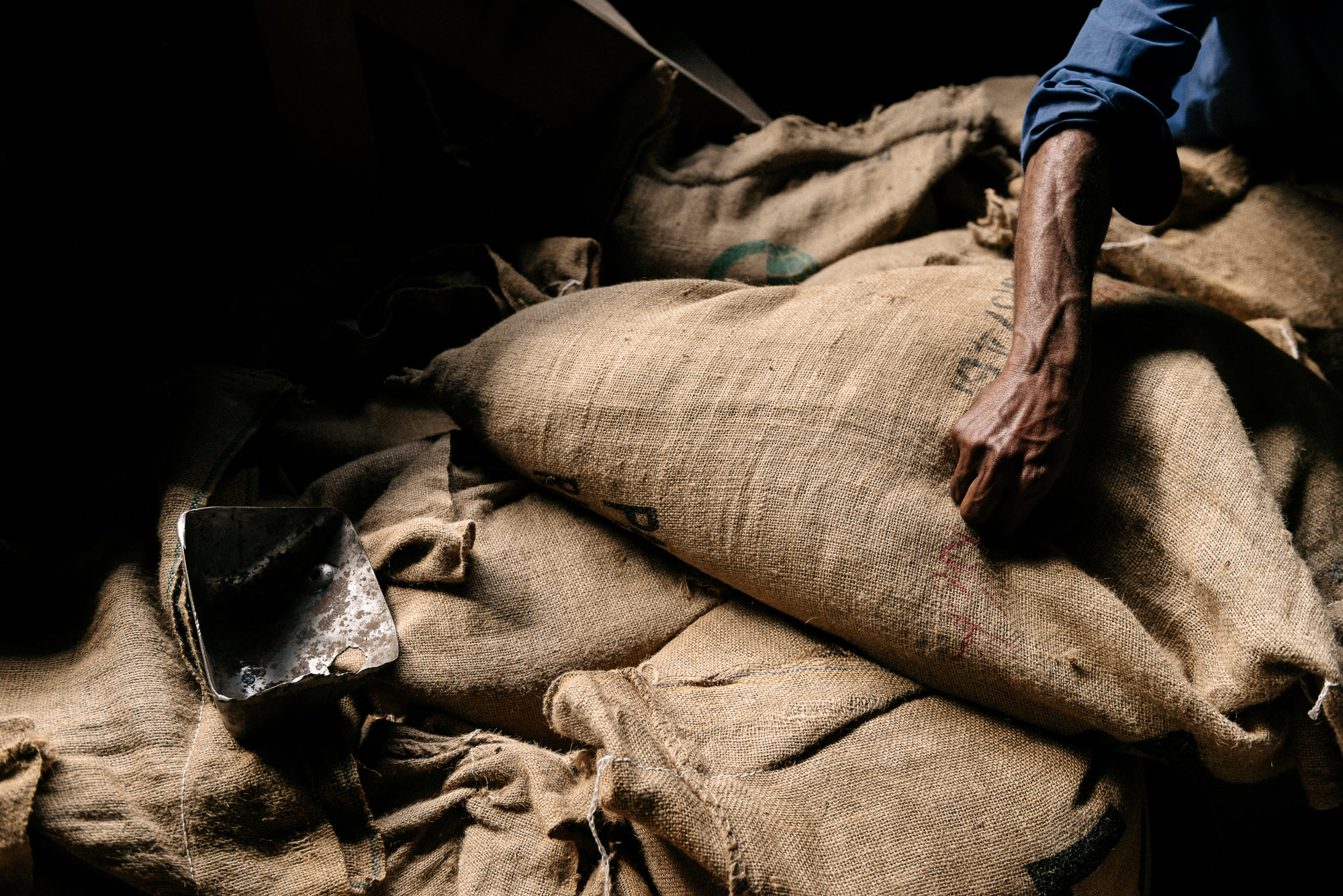 Papua New Guinea Coffee - Josh Griggs Photographer-41.jpg