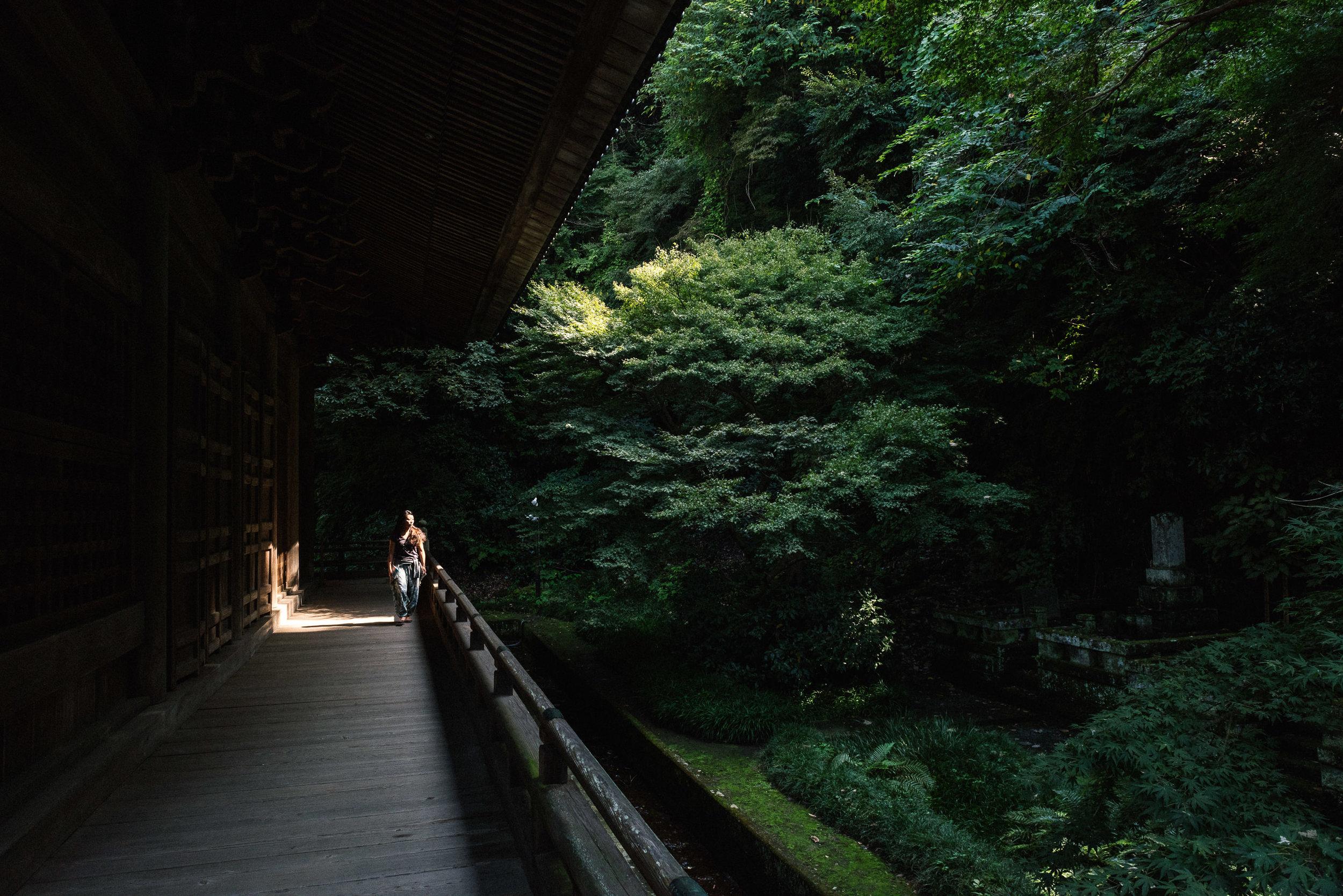 japan 2017-56.jpg