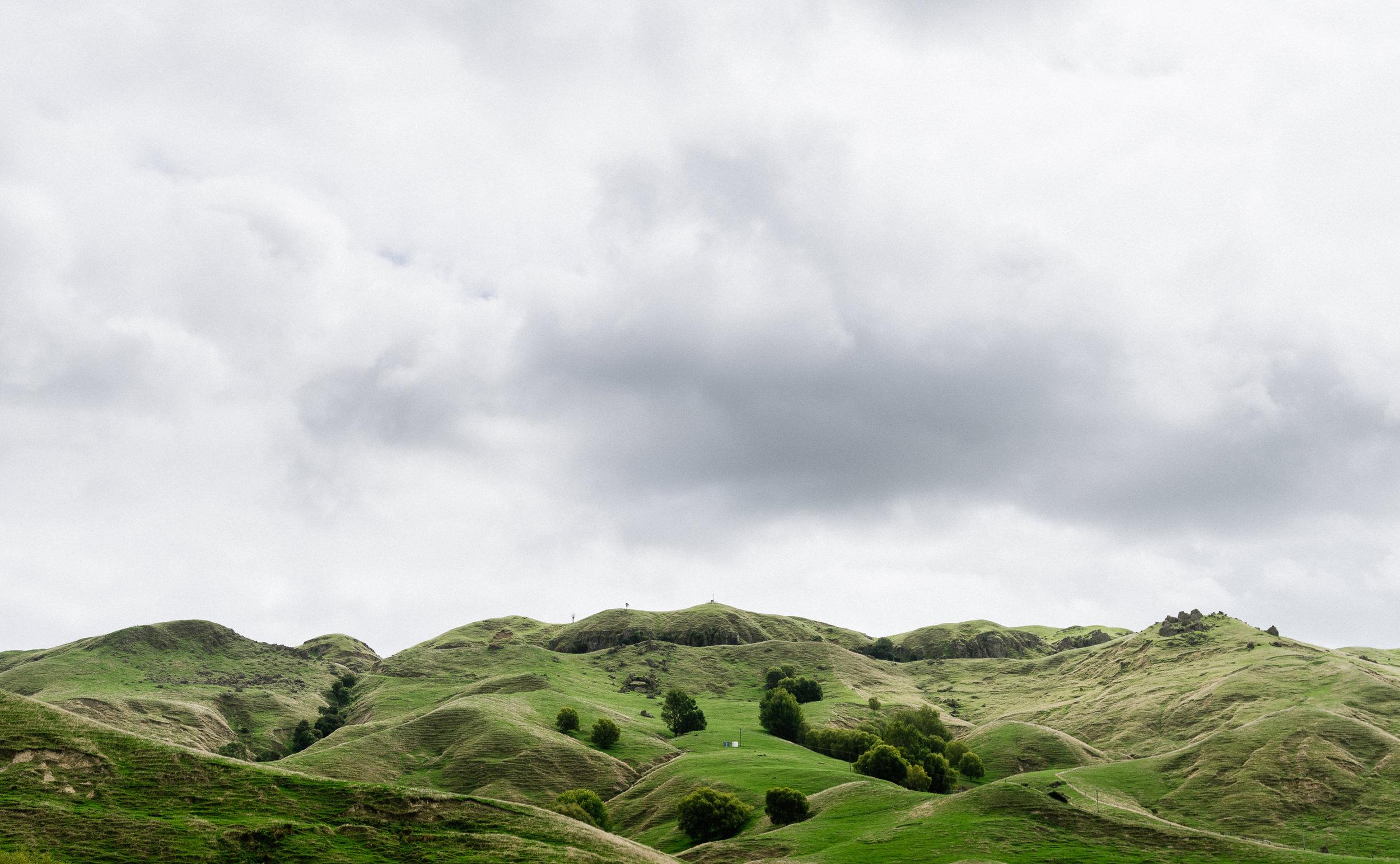 Al-Brown-Eat-Up-NZ-Cookbook-Josh-Griggs-Photographer-Splits-6.jpg