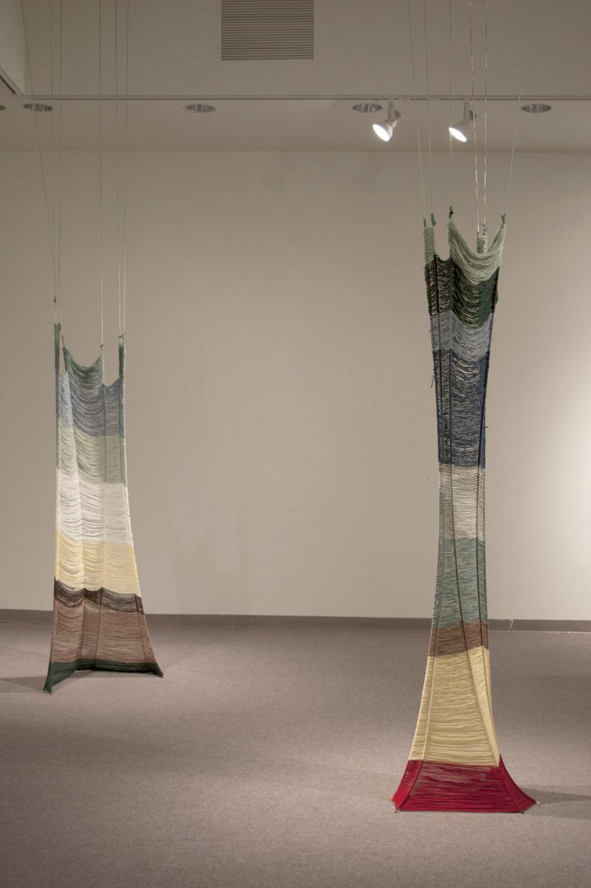 Evocative Configuration , acrylic fibers, 14 x 9 x 3 feet , 2013