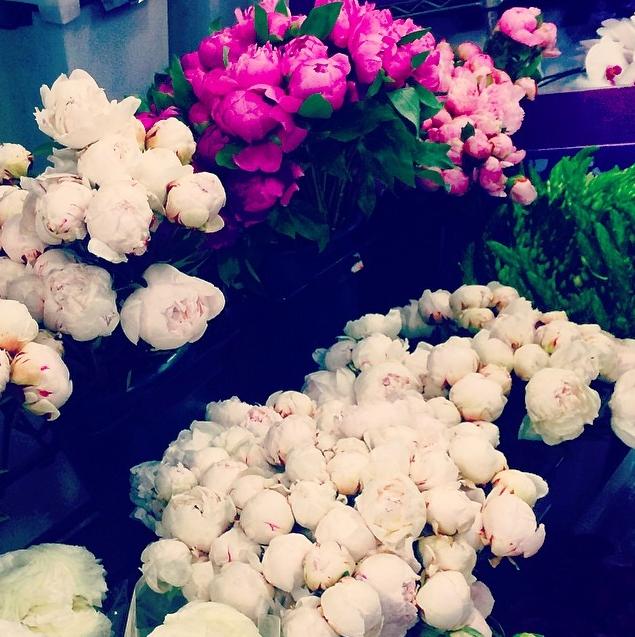 Flower market.png