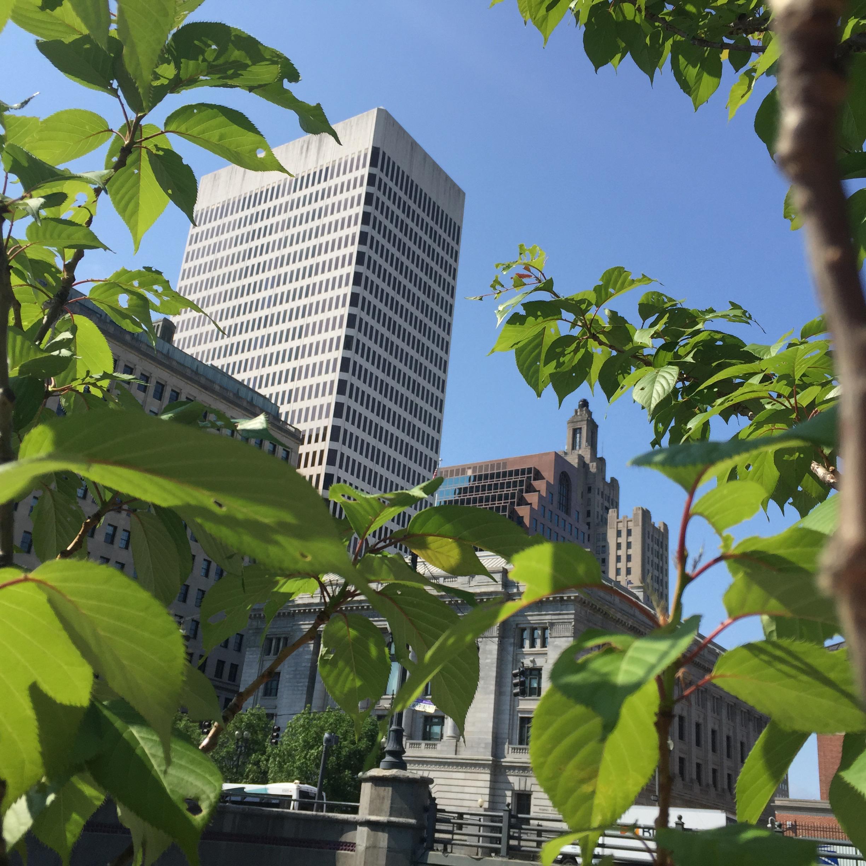 Summer_City_Providence_RI_alfresco_staceydoyle.jpg