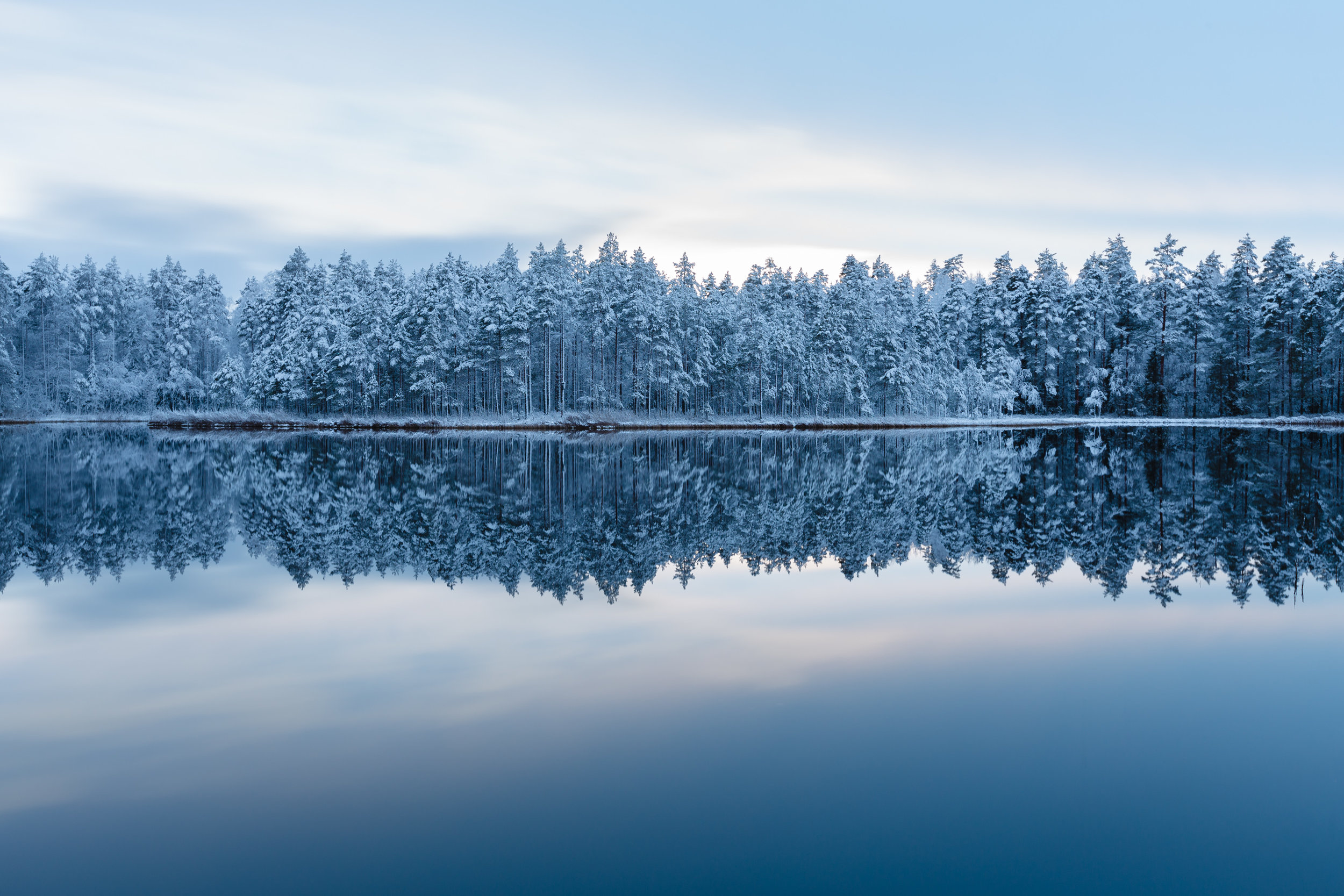 metsä ja lampi talvella.jpg