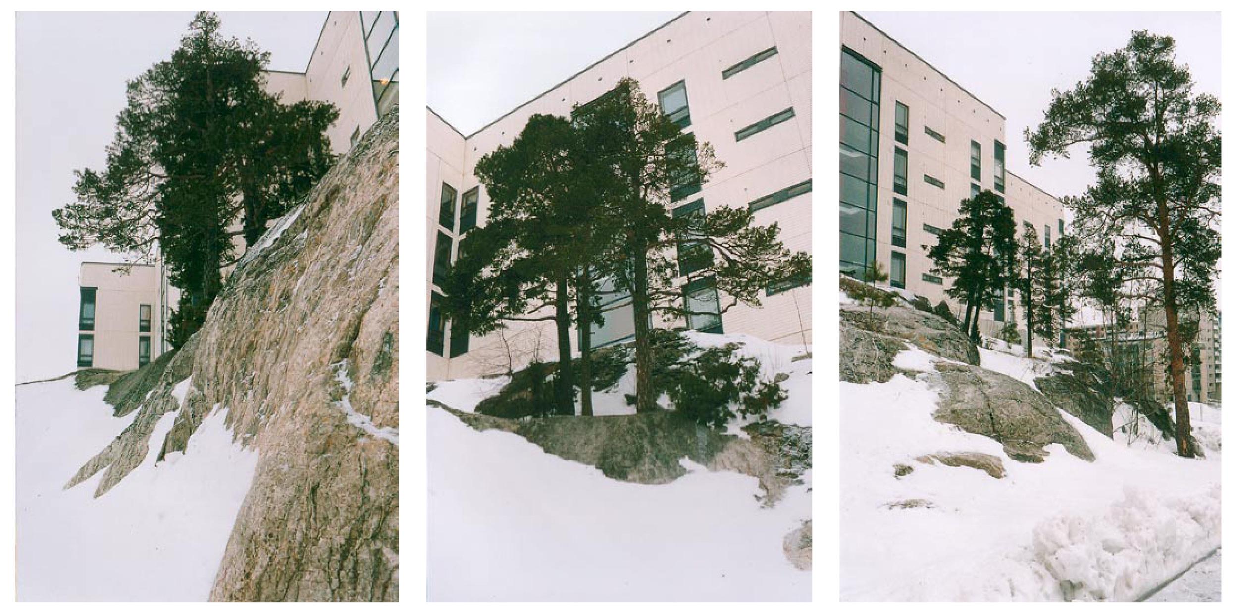 Jyrki Sinkkilä: The Viikinmäki Neighborhood, 1999 –