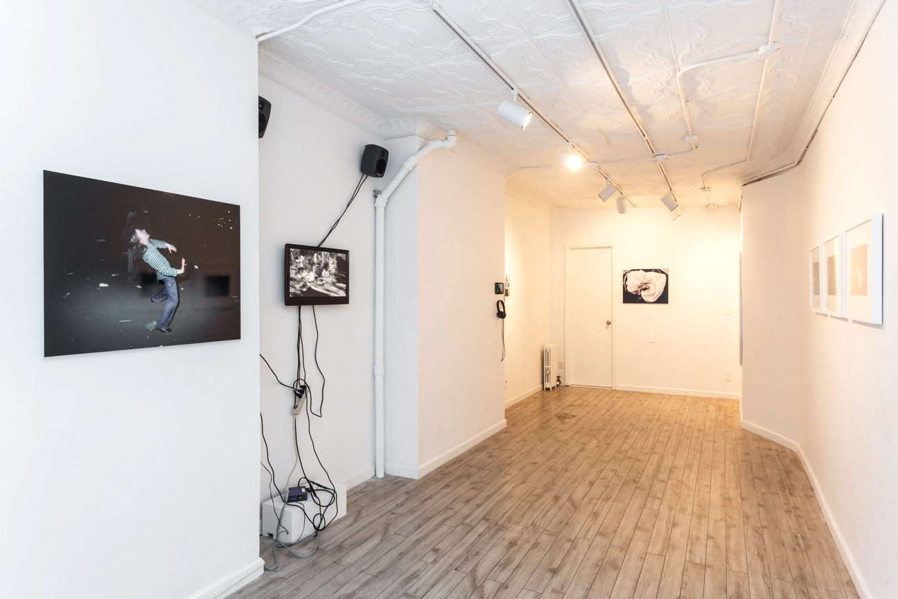 The Limits of Control , Station Independent Projects, New York, 2016. Installation view.