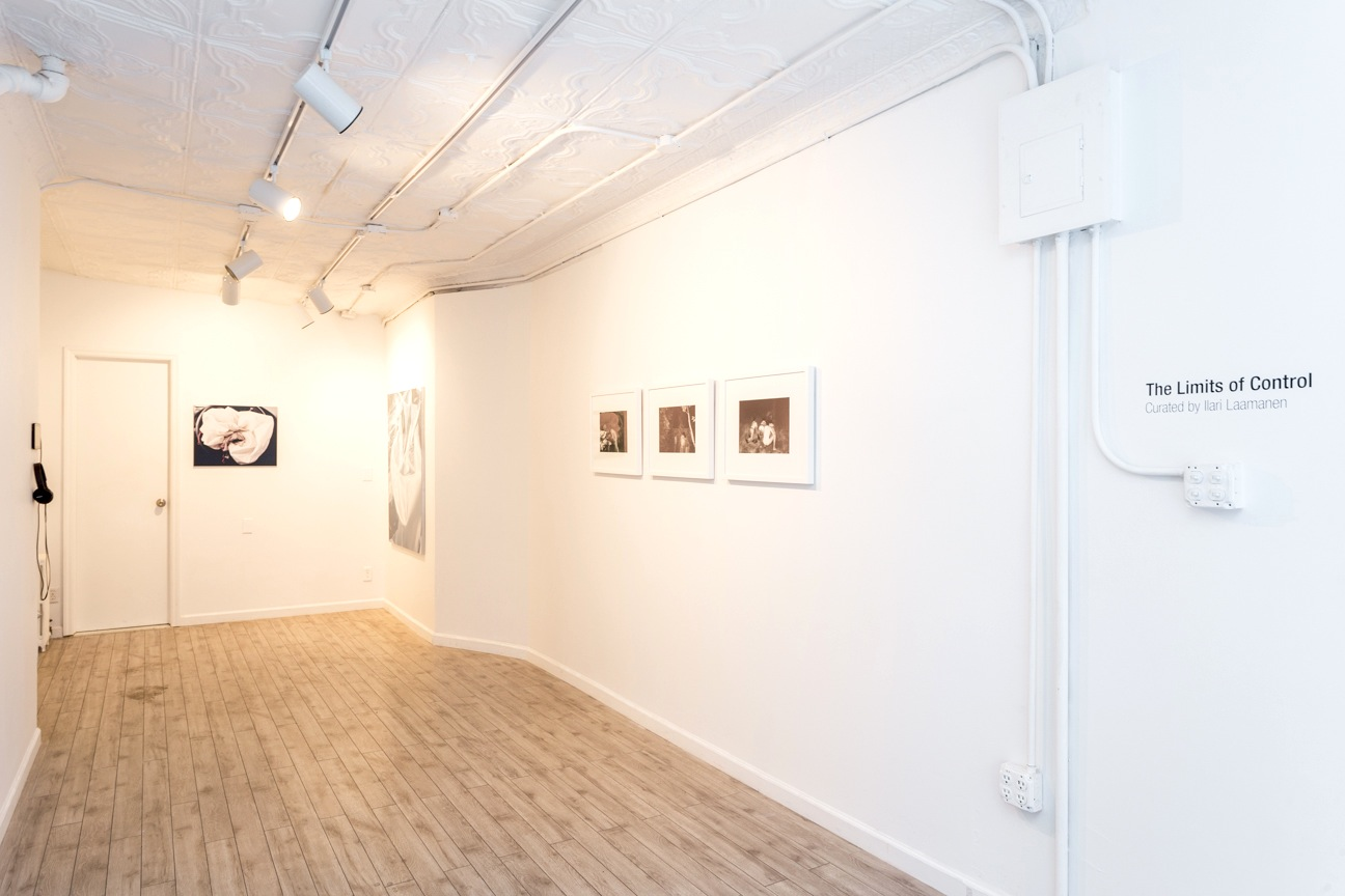 The Limits of Control,  Station Independent Projects , New York, 2016. Installation view.