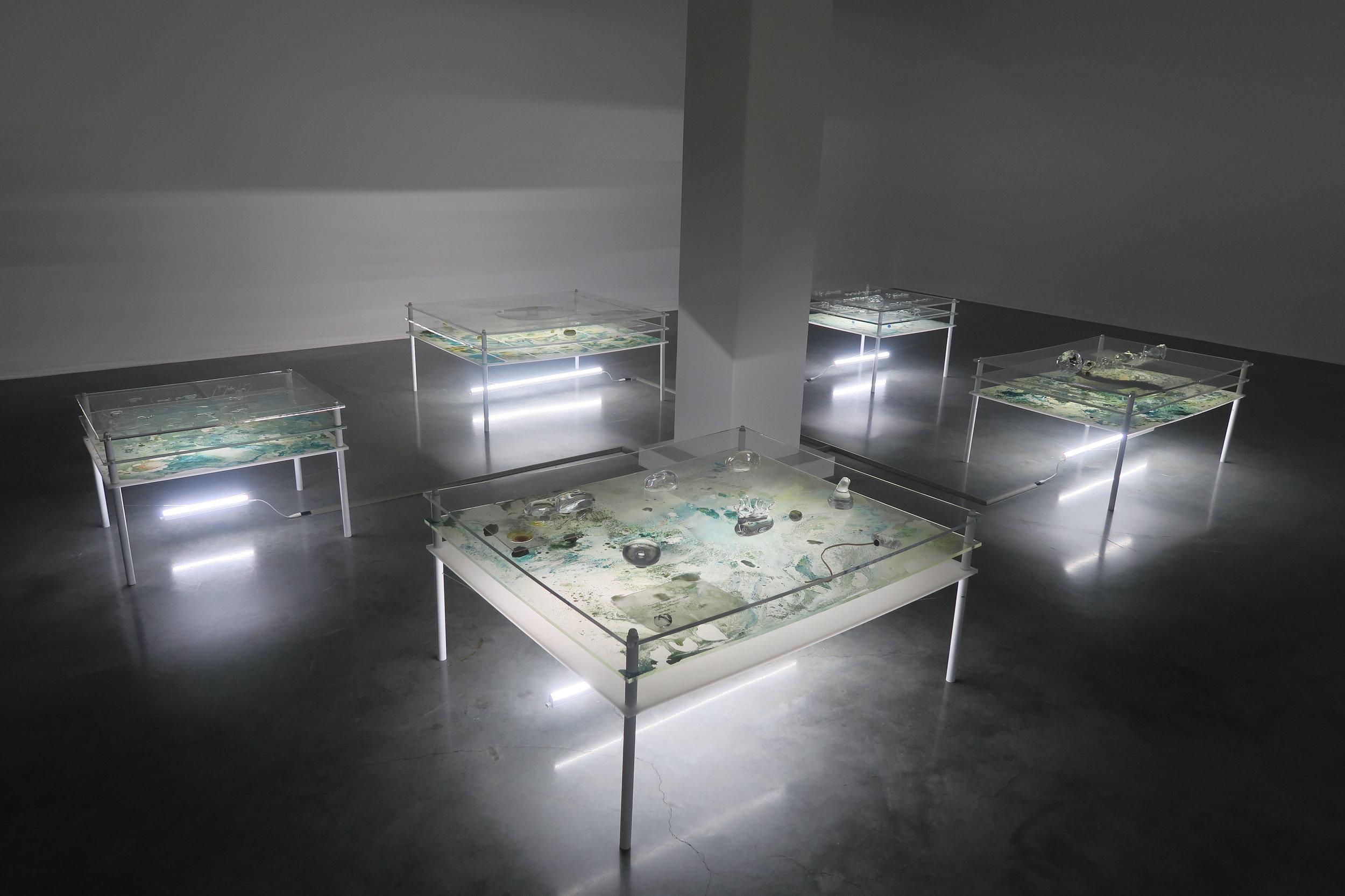 Tuomas Aleksander Laitinen,  Dossier of Osmosis , 21st Biennale of Sydney, 2018.