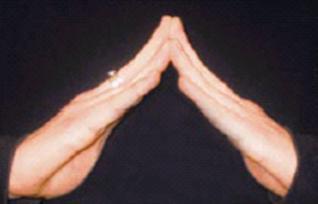 "American Sign Language symbol for ""housing."""