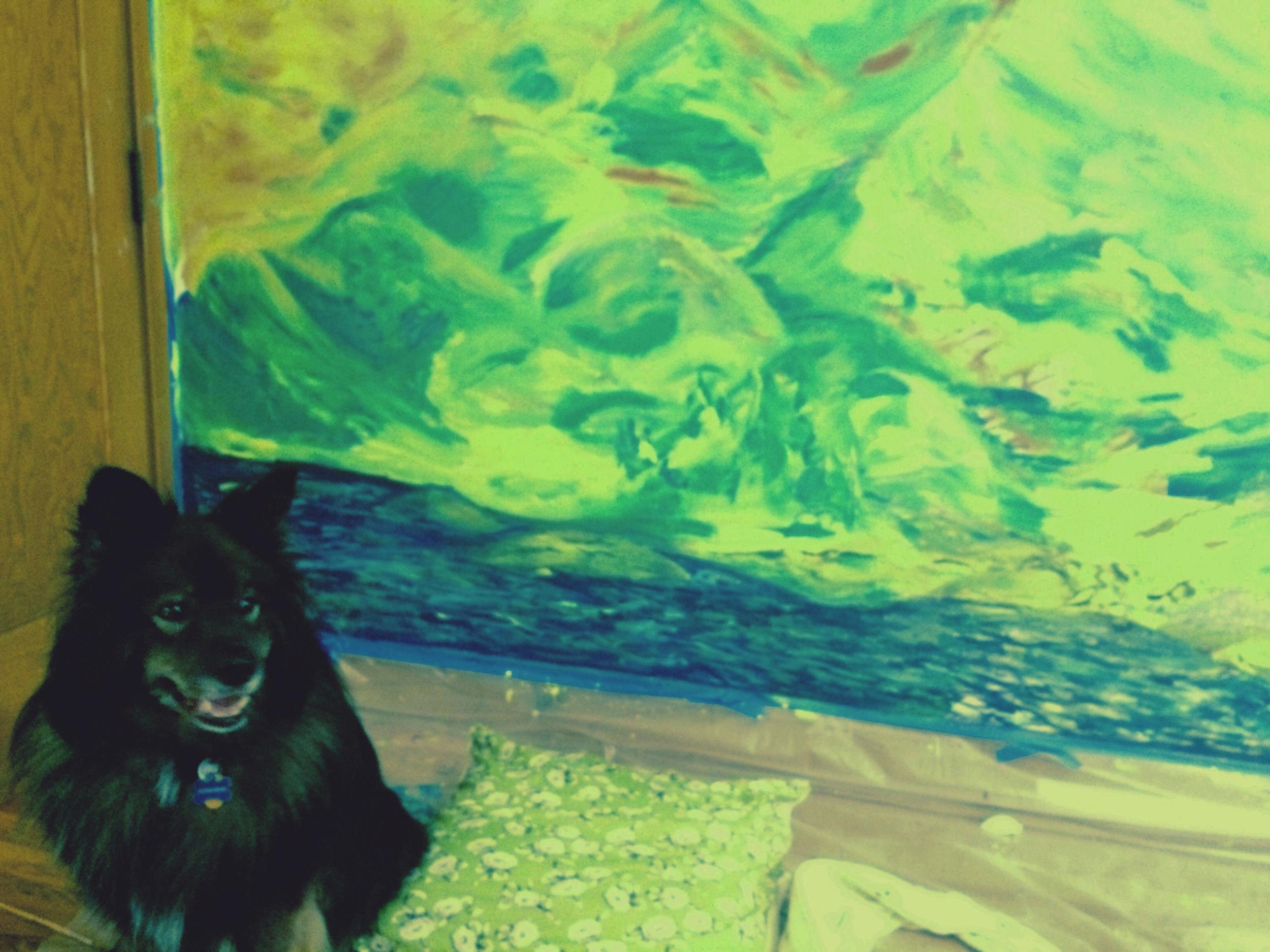muraldogperspective!