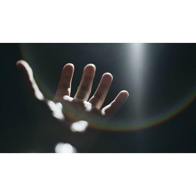 Reaching. #a7sii #flareporn #minolta #58mm #vsco #sony