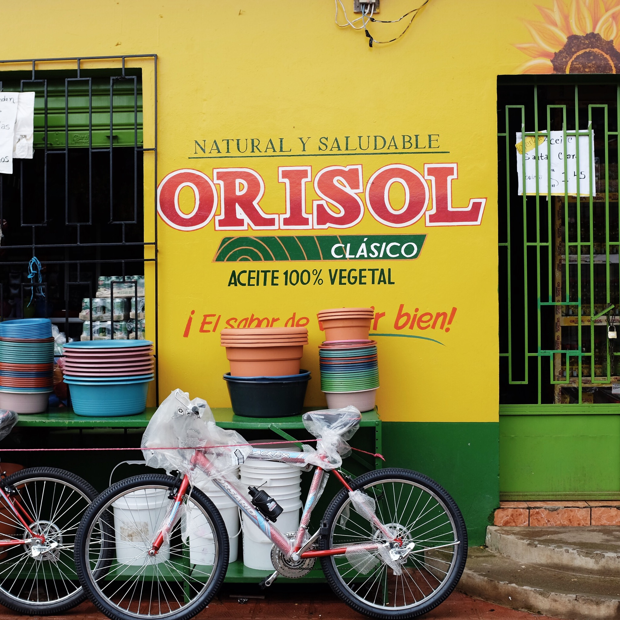 A colorful vignette spotted off the Pan-American Highway