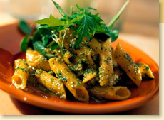 Penne Pasta with South American Cilantro Pesto