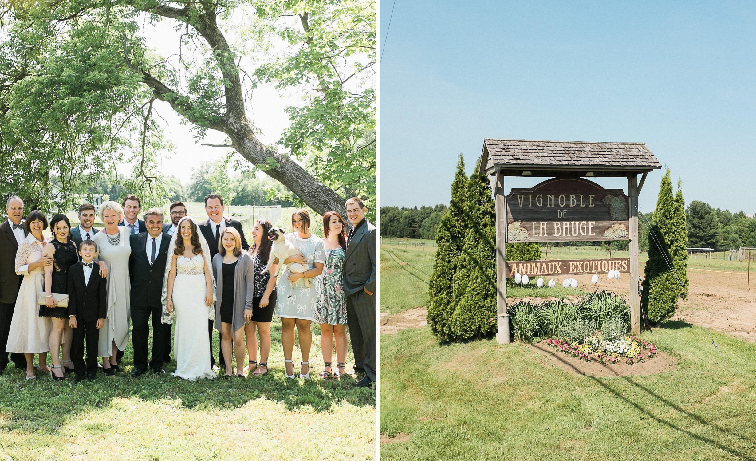 Le Vignoble de la Bauge wedding ceremony.jpg