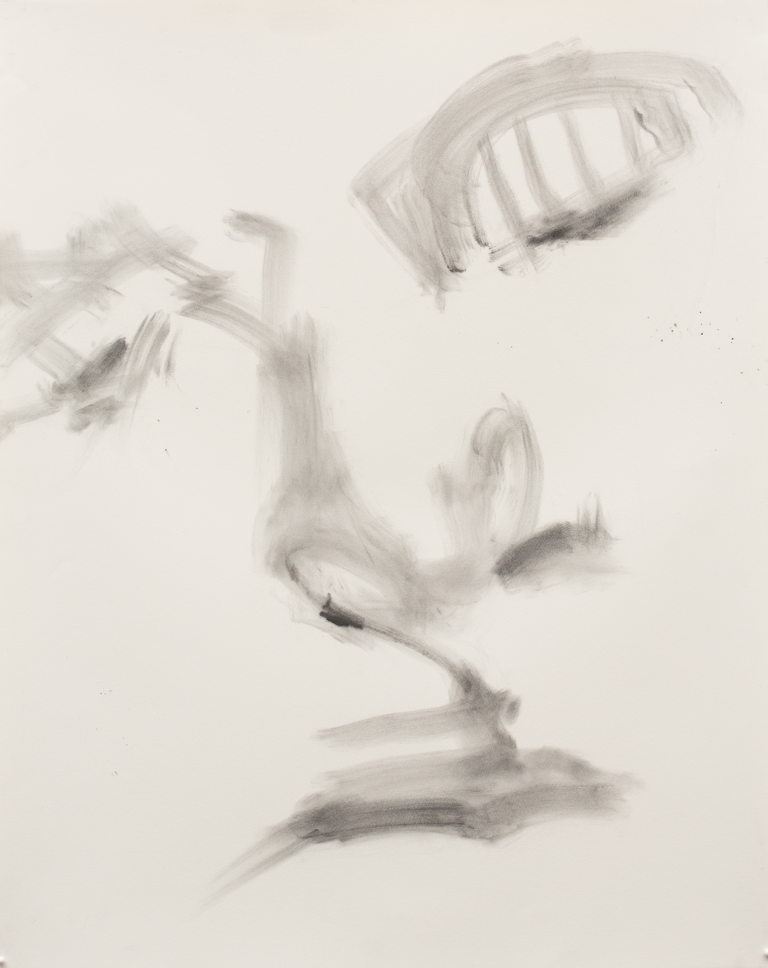 """Expressive Heads of the 21st Century , 2016, charcoal on paper, detail 24"""" x 19"""""""
