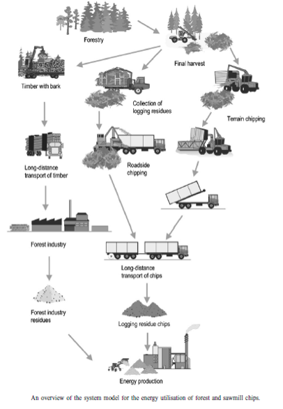 Figure 1: Image adapted from Biomass and Bioenergy, Selected Emissions and Efficiencies of Energy Systems Based on Logging and Sawmill Residues, 2002.