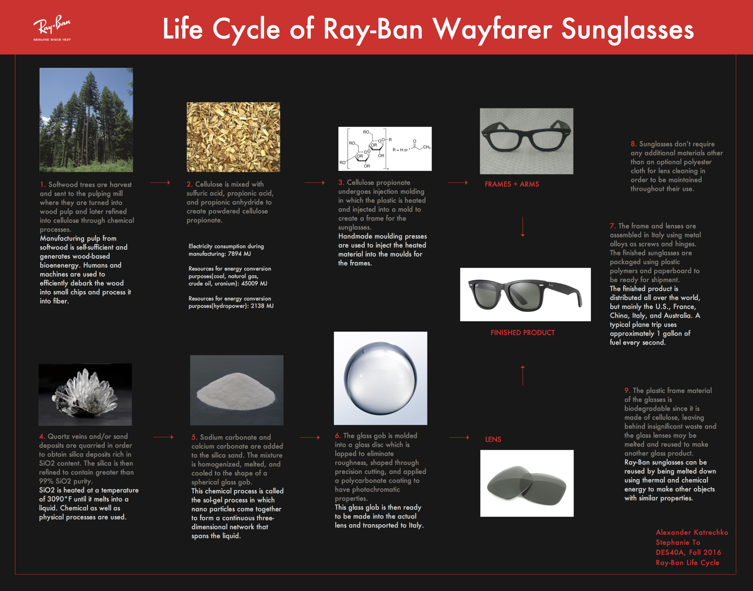 Life Cycle of Ray-Ban Sunglasses