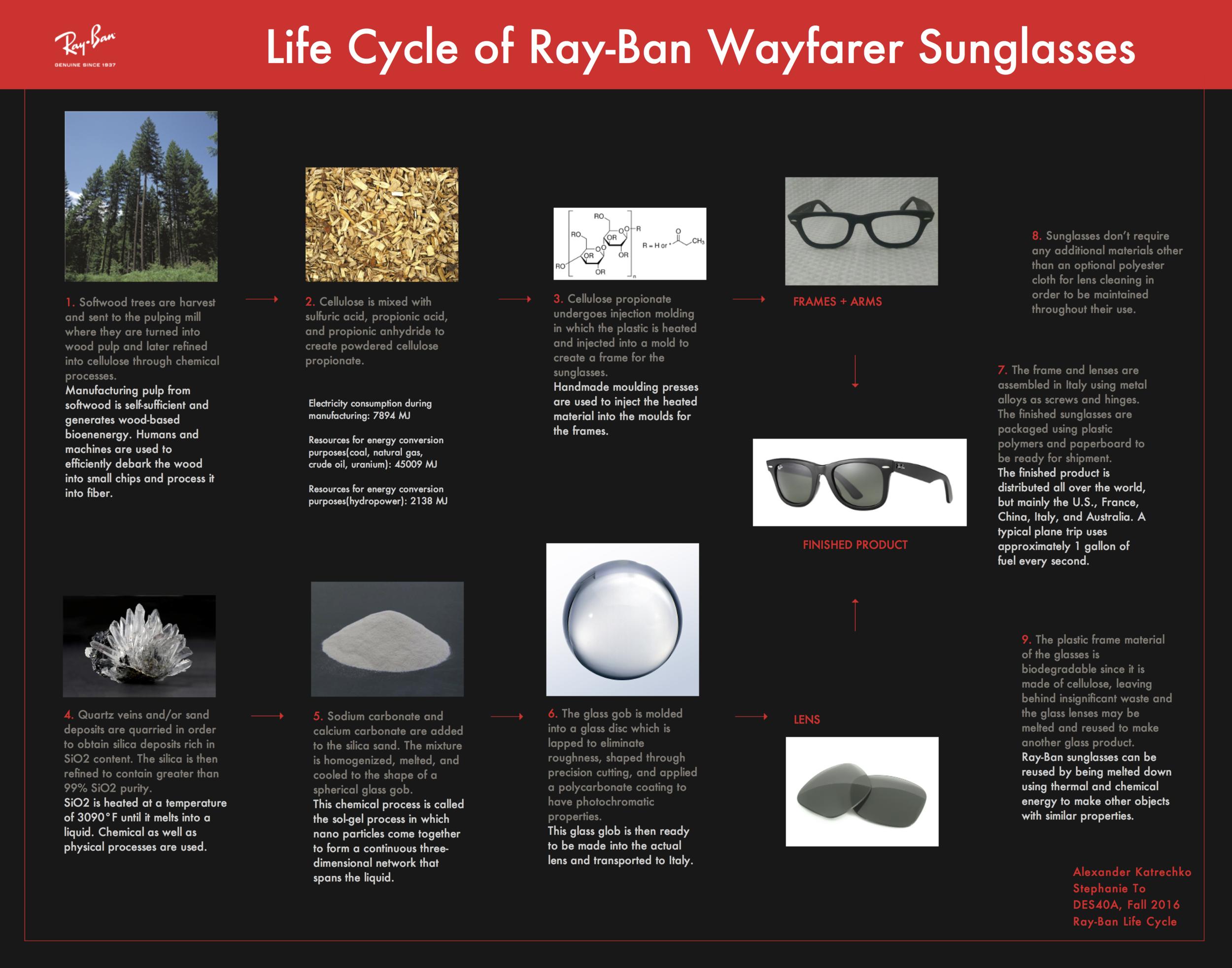 Ray-Ban Life Cycle Poster.png