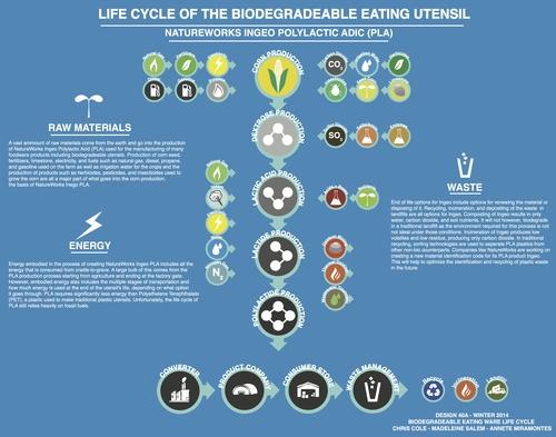 Biodegradable Utensil Full Size.jpg