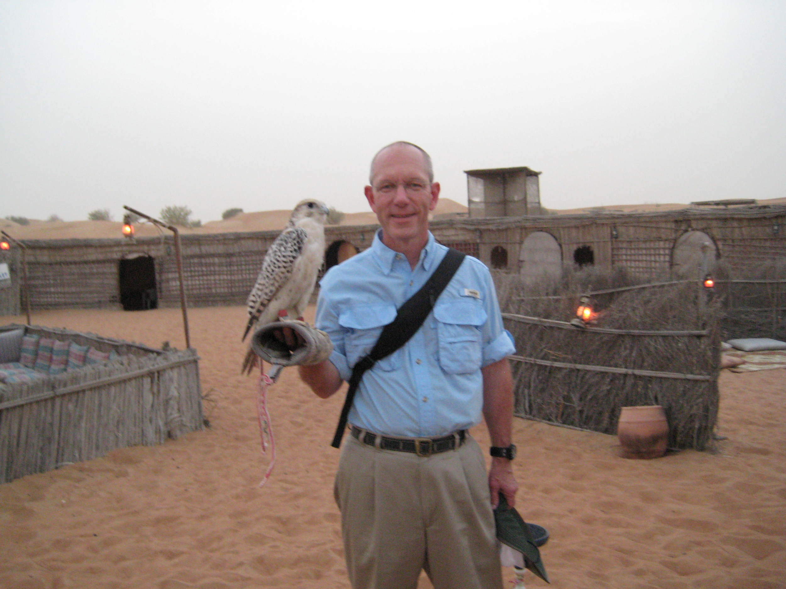 So, I'm in the desert of the UAE and this bird lands on my arm...