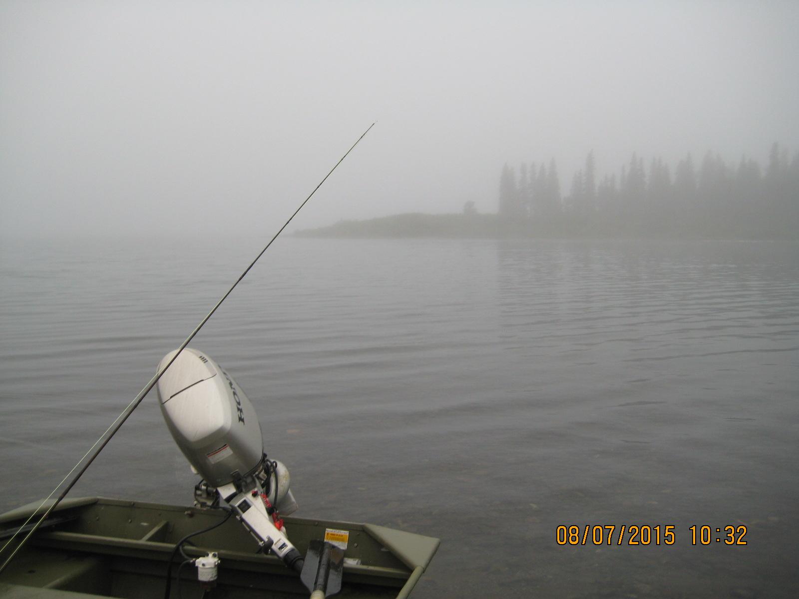 Foggy Friday morning. Magical boat ride to Sunshine Creek